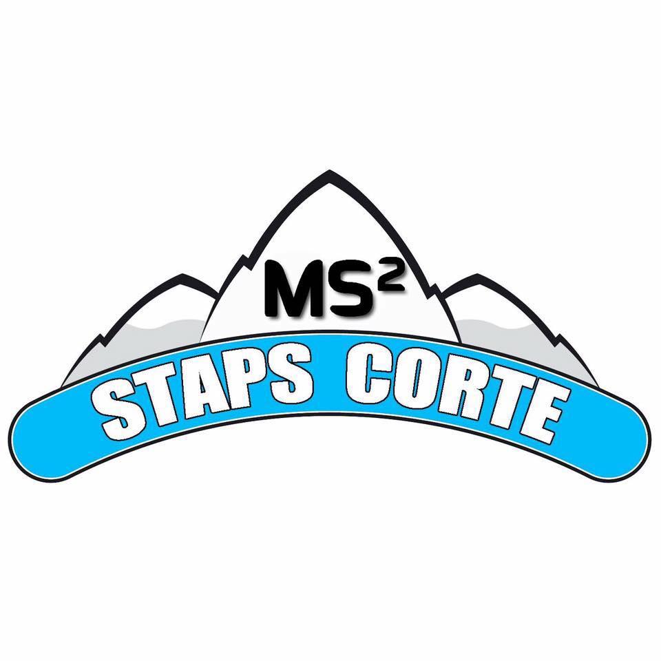 Logo MS²